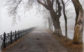 Picture the city, fog, spring, alley, Tver, Gorsad