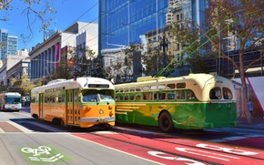 Picture the city, movement, street, home, tram, bus