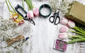Picture tulips, pink, flowers, tulips, spring, decoration, workplace, florist