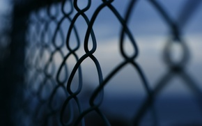 Picture macro, background, mesh, widescreen, Wallpaper, the fence, fence, wallpaper, widescreen, background, full screen, HD wallpapers, …
