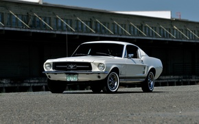 Wallpaper Fastback, 1967, Ford, Mustang, Mustang, Ford