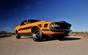 Picture Mustang, Ford, 1970, 1 428, Do