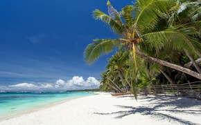Wallpaper sand, sea, beach, palm trees, shore, summer, beach, sea, sand, shore, paradise, palms, tropical