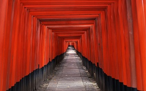 Picture Red, Japan, Corridor