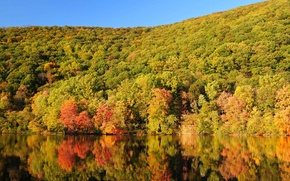 Picture autumn, forest, the sky, trees, mountains, lake, slope