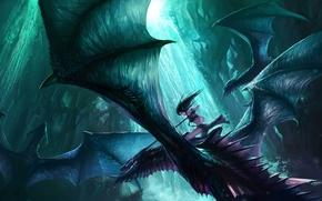 Picture dragons, flight, wings, girl, waterfall, elf