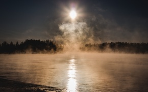 Picture cold, forest, the sun, fog, lake
