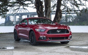 Picture mustang, red, ford, 5.0, other