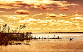 Picture the sky, clouds, birds, river, the reeds, dawn, the bushes, Argentina