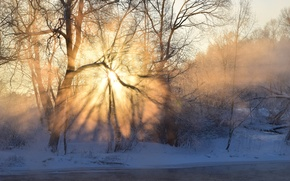 Picture frost, forest, the sky, the sun, rays, light, snow, trees, fog, river, sunrise, Winter, shadow, ...