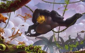 Picture jungle, Szymon Biernacki, bananas, gorilla, Banana Split