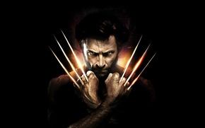 Picture Action, Fantasy, Wolverine, Hugh Jackman, X-Men, Origins, Logan, 2009, Wallpaper, Boy, Year, MARVEL, 20th Century …