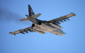 Picture flight, Rook, Su-25, The Russian air force, Su-25