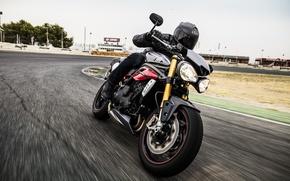 Picture moto, bike, Speed, power, track, naked, Triumph, 2016, SpeedTriple