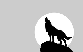 Picture the moon, wolf, shadow, minimalism, moon, wolf