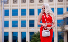 Picture girl, face, style, skirt, blonde, bag, beauty, the beauty
