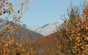 Picture autumn, forest, Mountains