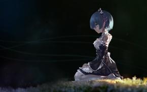 Picture girl, anime, art, Rem, Re: Zero kara hajime chip isek or Seikatsu