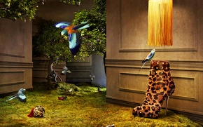 Picture birds, tree, wall, glamour, Shoes