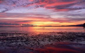 Wallpaper sea, dawn, the sky