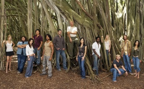Picture look, trees, movies, Lost, The series, actors, To stay alive