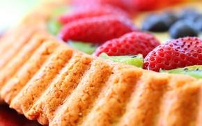 Wallpaper cake, kiwi, food, cake, dessert, dessert, sweet, blueberries, berries, strawberries, berries, kiwi, tart, pie, strawberry, ...