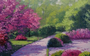 Picture trees, petals, track, Park, flowering, the bushes