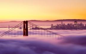 Wallpaper lights, bridge, San Francisco, san francisco, fog, golden gate bridge, sunset