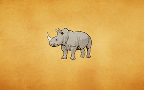 Wallpaper Rhino, light background, rhino, rhinoceros