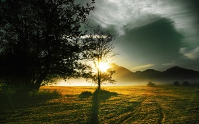 Picture field, the sun, mountains, morning
