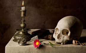 Picture Skull, Candle, Book
