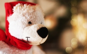 Picture hat, toy, new year, bear, bear, Santa
