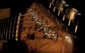 Wallpaper tree, guitar, strings
