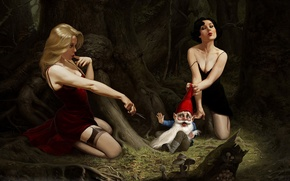Picture the victim, twilight, dwarf, fairy forest, witches, toadstool, violence, poisonous