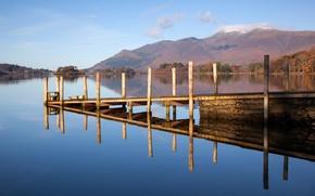 Picture forest, trees, bridge, lake, mountain, morning, the bridge