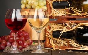 Picture wine, red, white, glasses, grapes, bottle, barrel
