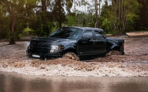 Picture forest, black, swamp, Ford, WB Ford Raptor
