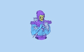 Picture Minimalism, Kittens, Art, Art, Skeleton, Skeletor, Kittens, Hillary White, Skeletor