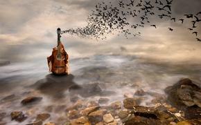 Picture fantasy, guitar, art