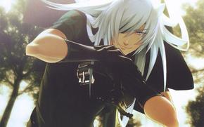 Picture smile, hair, sword, the demon, white, ears, visual novel, Rai, Lamento