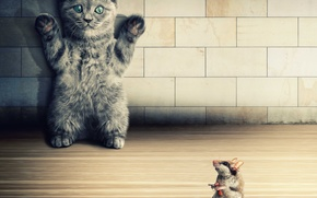 Picture cat, kitty, gun, wall, mouse, hands up