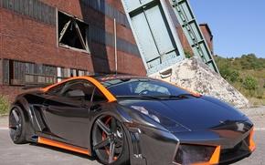Picture Lamborghini, Gallardo, Performance, xxx