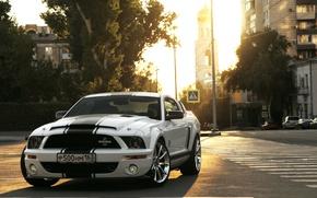 Picture Mustang, Road, Samara