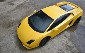 Picture yellow, Lamborghini, Gallardo, Yellow, Lamborghini, LP560-4
