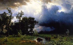 Picture the storm, landscape, storm, picture, Albert Bierstadt, Trail Of The Buffalo