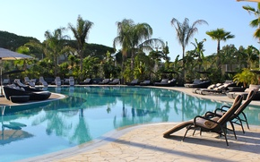 Picture palm trees, pool, resort