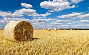 Picture field, the sky, landscape, nature, background, widescreen, Wallpaper, field, hay, wallpaper, widescreen, background, full screen, …