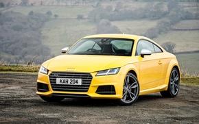 Picture Audi, Audi, coupe, Coupe, UK-spec, 2015, TTS