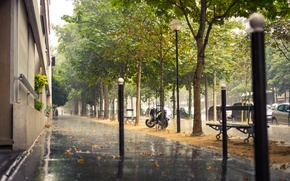 Picture road, trees, machine, the city, rain, street, France, Paris, building, home, Paris, the sidewalk, benches, ...