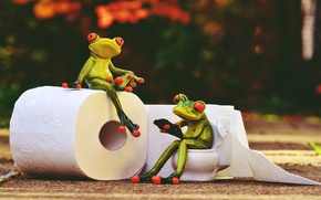 Picture vintage, animals, style, frog, rendering, paper, toilet
